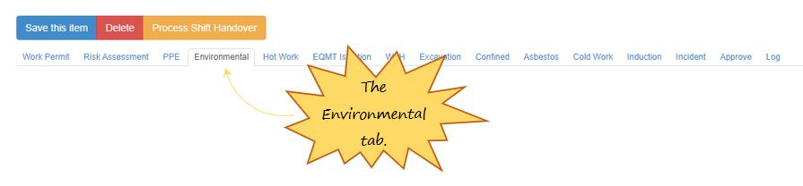 What is the Environmental tab in the PTW on OHS Online?